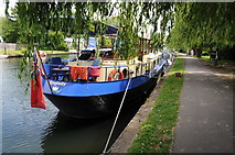 SU7682 : Baglady moored at Henley-on-Thames by Philip Halling