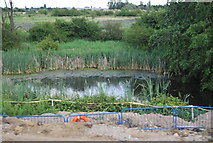 TQ5782 : Small pond by the M25 by N Chadwick