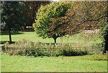 TM1645 : Small circular pond, Christchurch Park by N Chadwick
