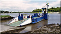 S6311 : The Waterford Castle ferry (4) by Albert Bridge