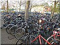 TL4657 : Bike park, Cambridge station by Oliver Dixon