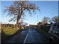 SJ8971 : Lowes Lane, Gawsworth by Peter Turner