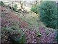 SE0023 : Hebden Royd Footpath 89, Cragg Vale by Humphrey Bolton