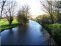 SU0425 : River Ebble, Broad Chalke - 10 by Maigheach-gheal