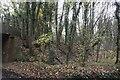 SU5275 : Embankment towards Newbury by Bill Nicholls