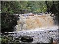 NY7540 : Waterfall and Footbridge, Ash Gill by Les Hull