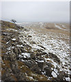 NY6809 : The edge of Grange Scar by Karl and Ali