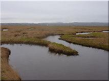 SJ2874 : Tidal gullies in the Burton Marsh by Peter Aikman