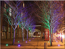 TQ3379 : Blue and Green Trees, Tower Bridge Road by David Anstiss