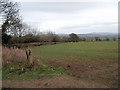 SO4378 : Field beside Green Lane by Row17