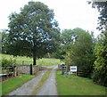 SO1639 : Private road to Maesllwch Castle near Glasbury by Jaggery