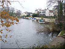 TQ0866 : River Thames by Shepperton by Colin Smith