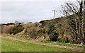 J2360 : Old railway embankment, Newport/Culcavy (1) by Albert Bridge