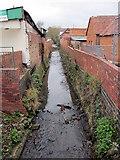 SP0278 : River Rea at West Heath Road Bridge by Roy Hughes