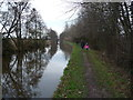 SJ4434 : Part of the towpath of the Llangollen Canal near Lyneal Wharf by Jeremy Bolwell