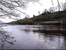 NZ1164 : River Tyne at Wylam Scars by Andrew Curtis