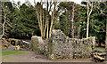 J1486 : Antrim Castle by Albert Bridge