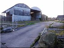 NZ1164 : Wylam Hills Farm by Andrew Curtis