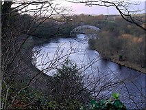 NZ1164 : River Tyne & Hagg Bank Bridge from above Wylam Scars by Andrew Curtis