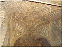 SP0202 : Fan Vaulting by Colin Smith