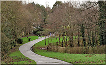 J3773 : Park path, Belfast (1) by Albert Bridge