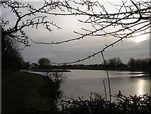 SK4976 : Harlesthorpe Dam by SMJ