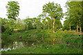 TQ3248 : Pond, Branslands Wood by Ian Capper
