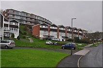 SX9364 : Torquay : Perinville Road by Lewis Clarke