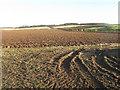NT5781 : Winter farmscape - East Lothian by M J Richardson
