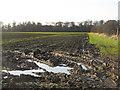 NT5783 : Fieldside track at Blackdykes by M J Richardson