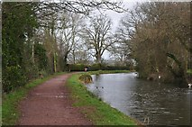 SS9712 : Tiverton : The Grand Western Canal by Lewis Clarke