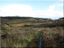 NS0129 : Path from Loch Urie by Richard Webb