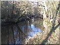 SK2998 : River Don at Deepcar by Dave Pickersgill