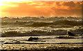 V4898 : Sunset Kinard by barbara walsh