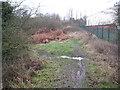 SP3683 : Coventry: Former Wyken Mineral Branch Railway by Nigel Cox