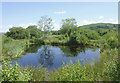 SN6862 : Pool and trees on Cors Caron in July, Ceredigion by Roger  Kidd