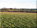 NZ0257 : Farmland northwest of Fotherley Buildings (2) by Mike Quinn