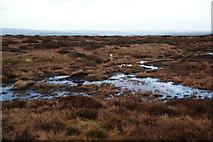SD9834 : Footpath on Dick Delf Hill by Bill Boaden