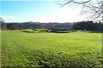 ST3390 : Roman Amphitheatre in Caerleon by Eddie Reed