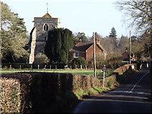 SU8441 : Mill Lane, Frensham by Colin Smith