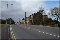 ST1587 : Row of houses at the bottom end of Nantgarw Road Caerphilly by Eddie Reed