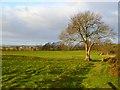 NZ1312 : Farmland, Hutton Magna by Andrew Smith