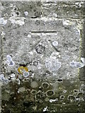 SY5889 : Bench Mark, The Church of St Michael and All Angels by Maigheach-gheal