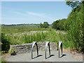 SN6862 : Bike park and bog near Tregaron, Ceredigion by Roger  Kidd