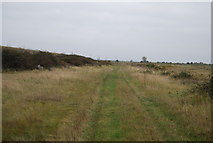 TQ7178 : Footpath south of Lower Hope Point by N Chadwick