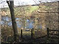 NT6929 : River Teviot by Richard Webb
