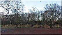 NS7357 : Closed car park, Strathclyde Park by Richard Webb