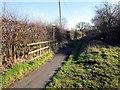 SJ4767 : Footpath near Stamford Bridge by Jeff Buck