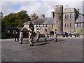SN0113 : Picton Castle by chris whitehouse