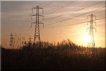 ST3283 : Power lines through Newport Wetland Reserve - Uskmouth by Mick Lobb
